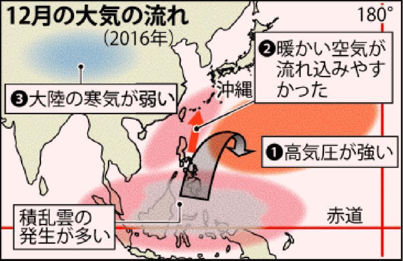 12月平均気温21.3度 沖縄、過去最高に並ぶ 海面水温は記録更新