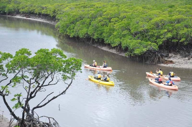 世界自然遺産登録へ IUCN専門家、西表島で現地調査開始