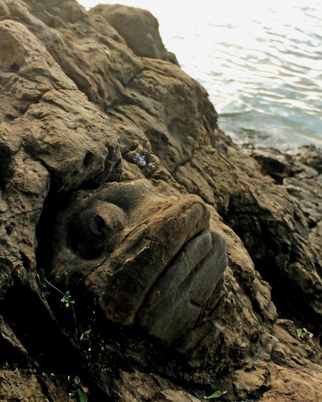 魚かよ!マジでそっくりすぎる岩 石垣島の「島人ぬ宝」新名所24選