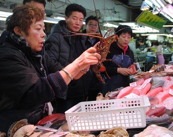 需要旺盛で資源量ピンチに イセエビの禁漁期1カ月延長、体長制限も引き上げ