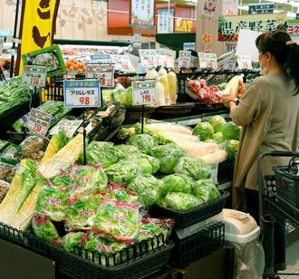 食料品売り場では、白ネギや白菜など鍋料理の食材が並ぶ=26日、那覇市・タウンプラザかねひでにしのまち市場