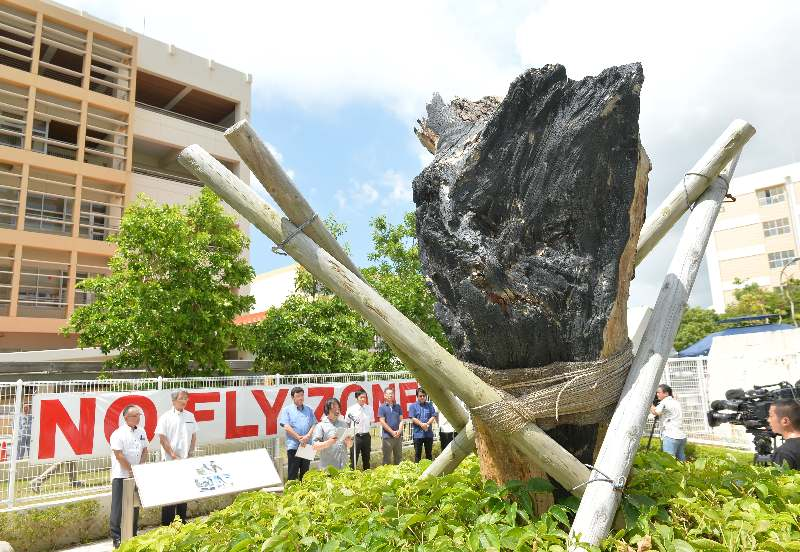 米軍ヘリ墜落から14年 沖縄国際大 相次ぐ事故「政府に不信」